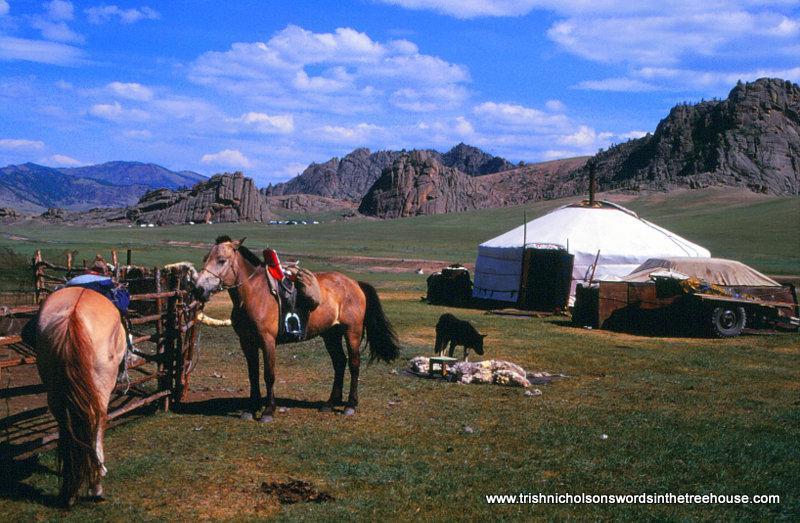 packing horse for trekking