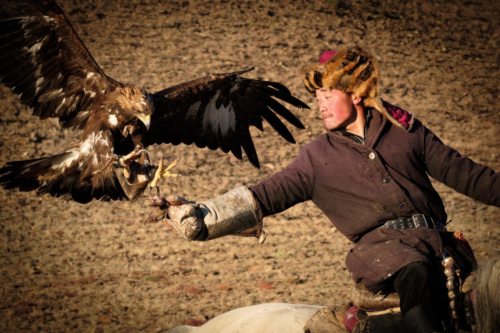 Eagle hunters Mongolia