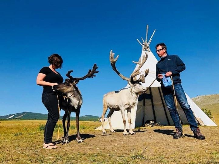 Reindeers at Khovsgol lake Mongolia
