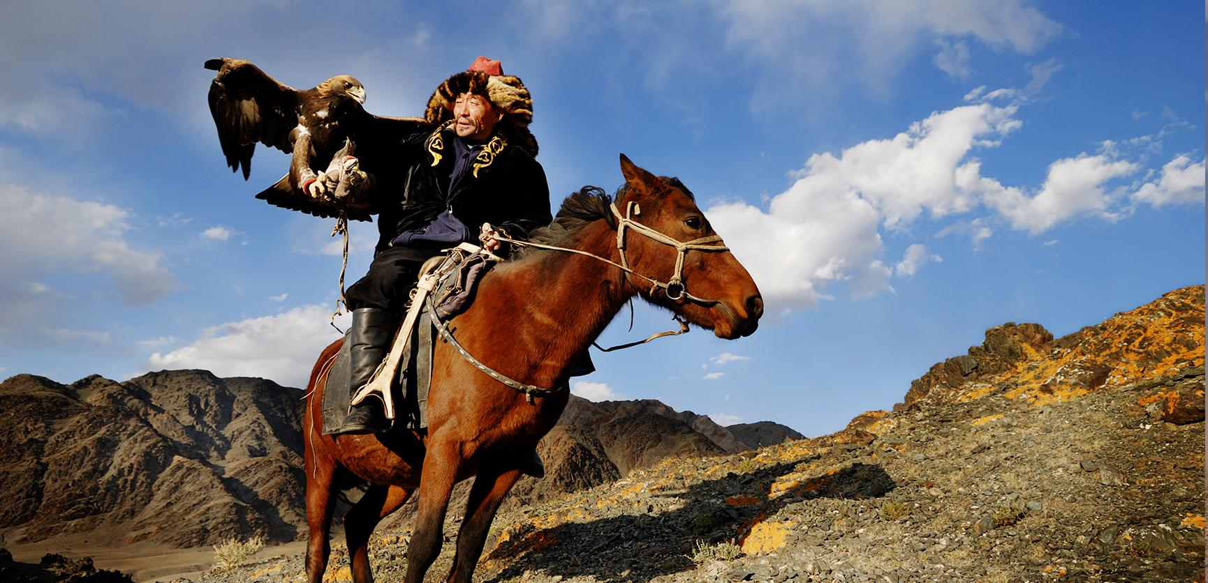 camel track tour